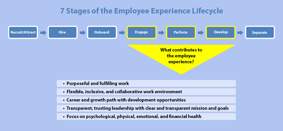 7 Stages of the Employee Experience Lifecycle